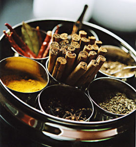 Ancient Indian Food Spices